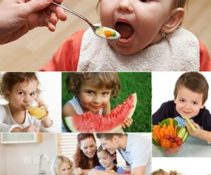 День 27: Основы сбалансированного питания