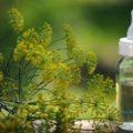 Что такое укропная вода?
