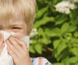 Распространенные разновидности аллергических заболеваний
