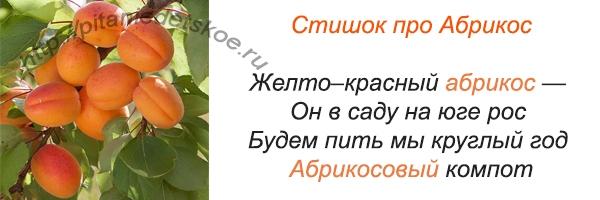 стихи про абрикос