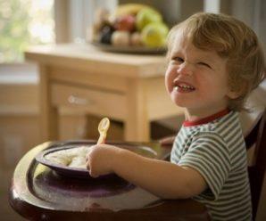 Как вводить новые блюда, чтобы малыш ел их с аппетитом?