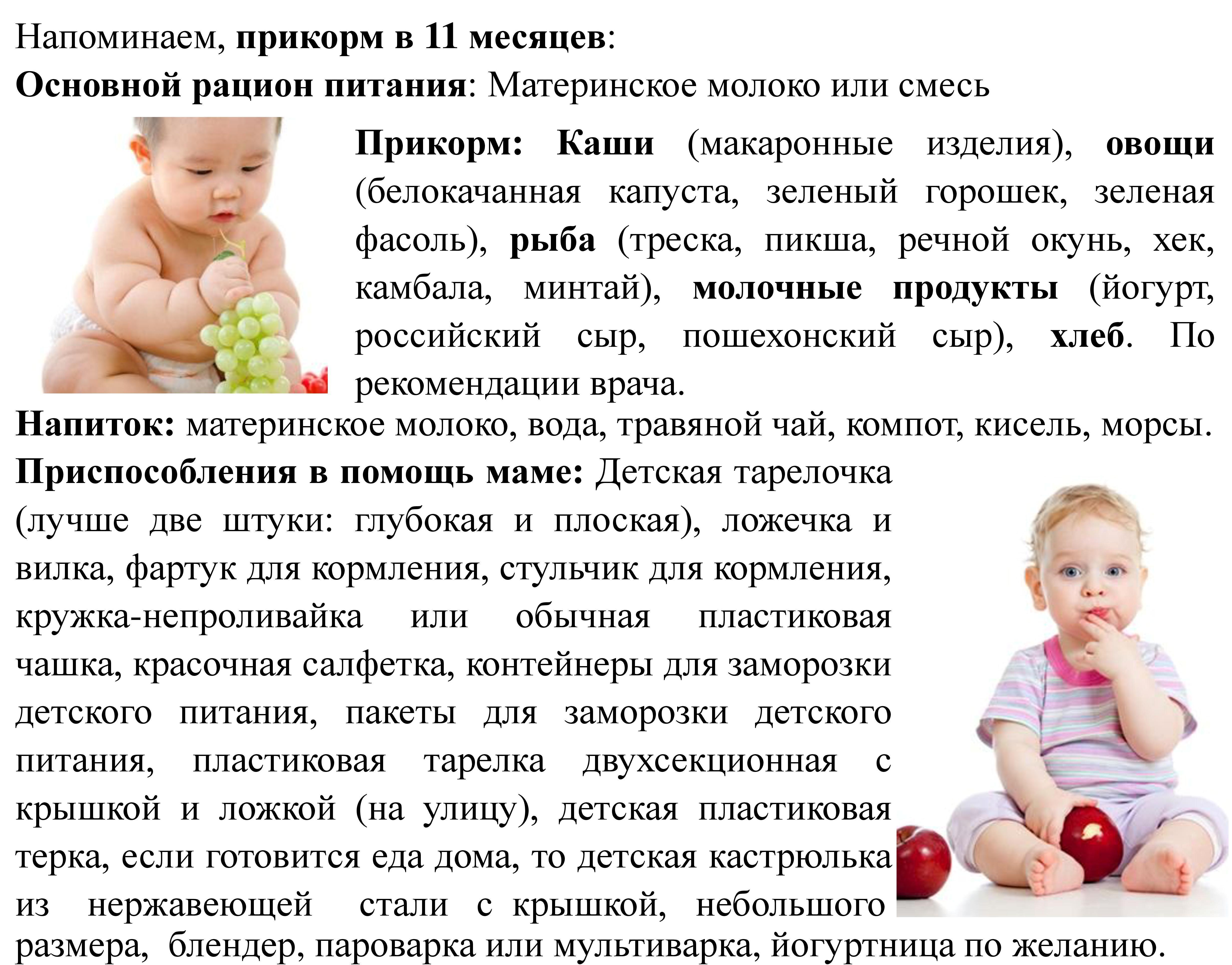 Прикорм в 11 месяцев