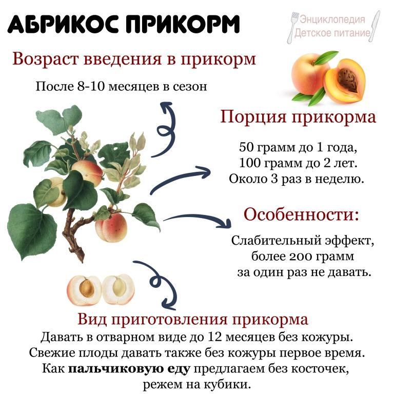 абрикос прикорм
