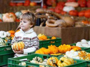 осеннее питание детей