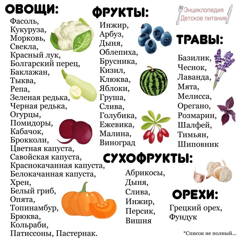Список продуктов сентября