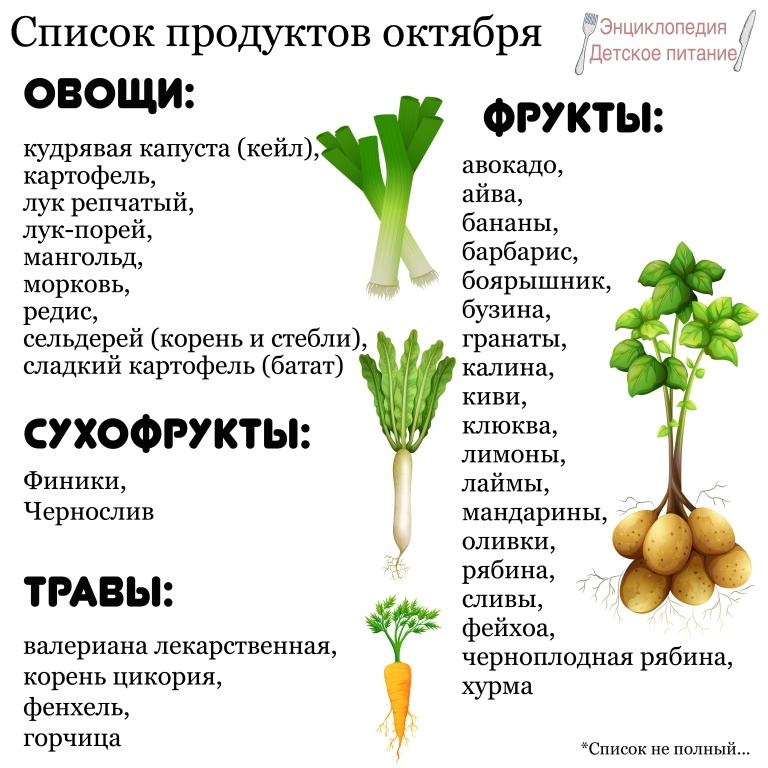 список продуктов октября