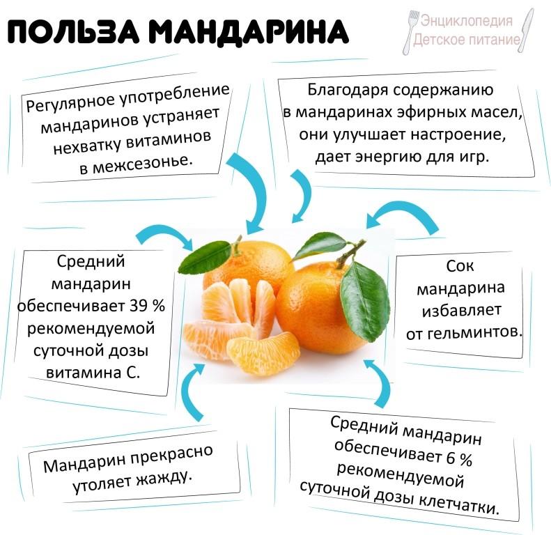 Мандарин прикорма