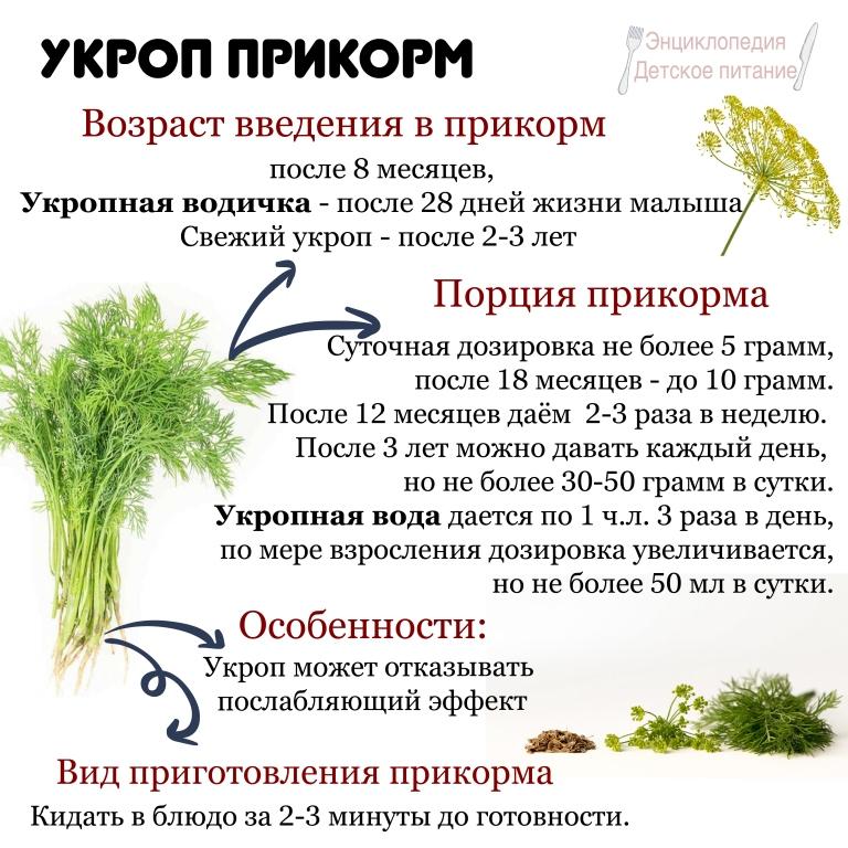укроп прикорм