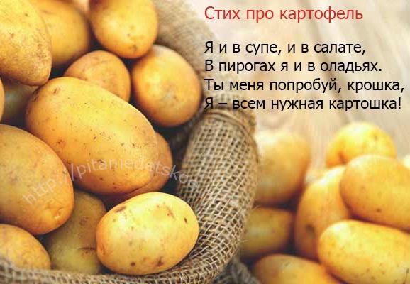 картофель в прикорме