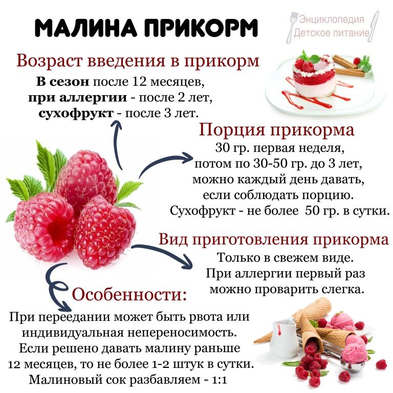 малина прикорм