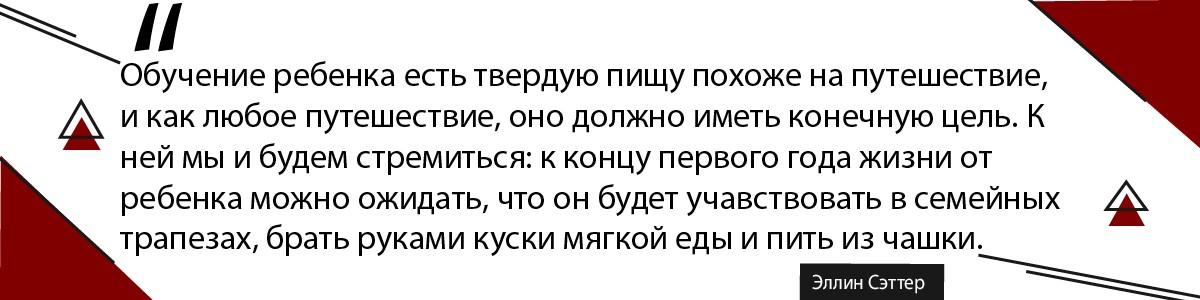 Эллин Сэттер