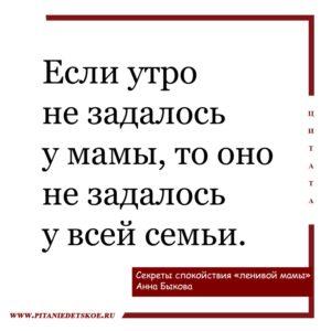 """Секреты спокойствия """"Ленивой мамы"""" Анна Быкова"""