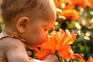 Синестезия вкуса у детей