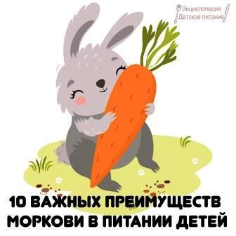 10 важных преимуществ моркови в питании детей