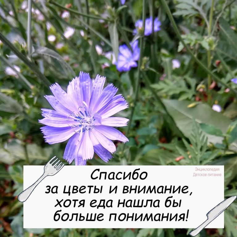 юмор цветы