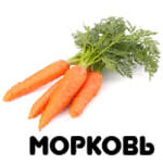 морковь от А до Я