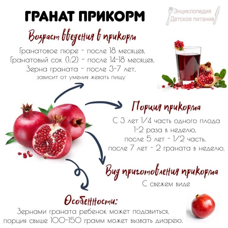 гранат прикорм инфографика