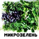 для от А до Я микрозелень