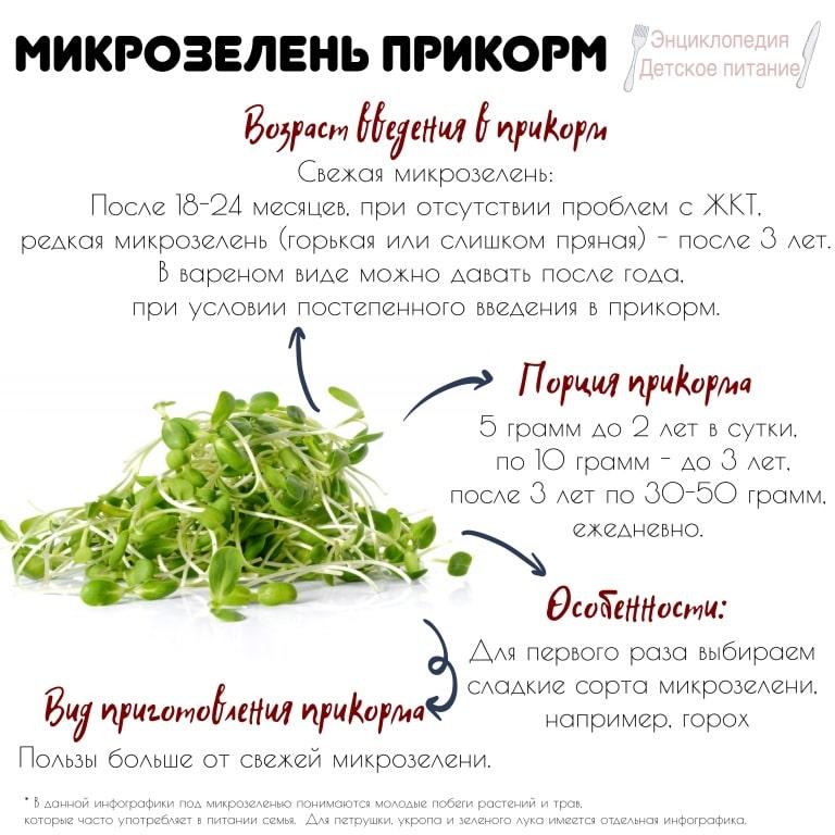 микрозелень прикорм инфографика