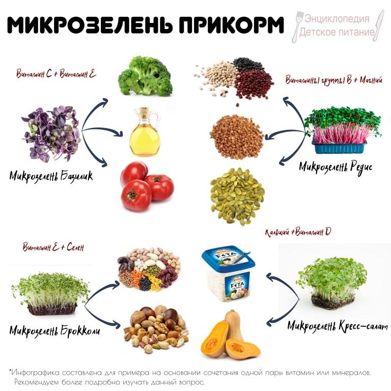 сочетание микрозелень прикорм